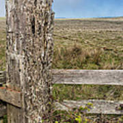 Cattle Fence On The Stornetta Ranch Poster