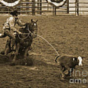 Cattle Roping In Colorado Poster