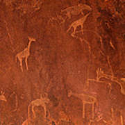Cave Paintings By Bushmen, Damaraland Poster