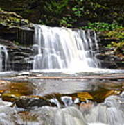 Cayuga Falls Poster