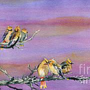 Bohemian Waxwings Birds Poster