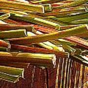 Celery In The Sun Poster