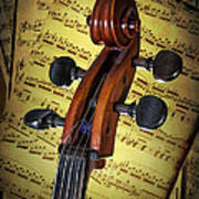 Cello Scroll With Sheet Music Poster