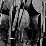 Cellos 6 Black And White Poster