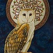 Celtic Barn Owl Poster