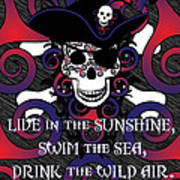 Celtic Spiral Pirate In Blues And Reds Poster