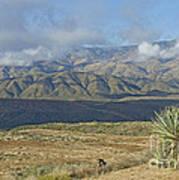 Central Arizona Landscape Poster