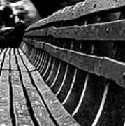 Central Park Bench Poster
