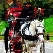 Central Park Carriage Poster