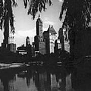 Central Park Evening View Poster