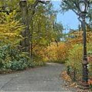 Central Park In Autumn 7 Poster