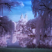 Central Park Lake Willows Color Poster