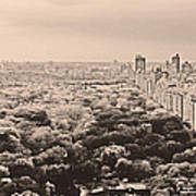 Central Park Pano Sepia Poster