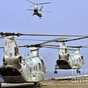 Ch-46e Sea Knight Helicopters Take Poster