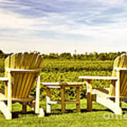 Chairs Overlooking Vineyard Poster