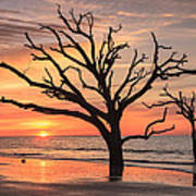Charleston South Carolina Edisto Island Beach Sunrise Poster