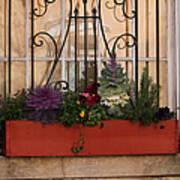 Charleston Window Garden Poster