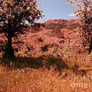 Charons Garden Wilderness Poster