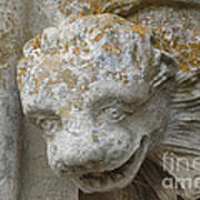 Chartres Cathedral Carved Head Poster