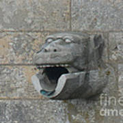 Chartres Cathedral Gargoyle Drain Poster