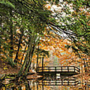 Chenango Valley State Park Poster by Christina Rollo