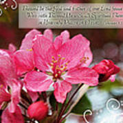 Cherry Blossom Greeting Card With Verse Poster