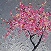 Cherry Blossom In Pink Poster