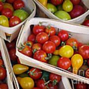Cherry Tomatos Poster