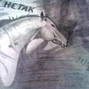 Chetak Poster