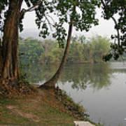 Chiang Mai University Lake Poster