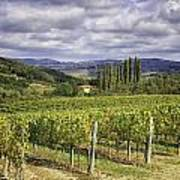 Chianti Country Poster