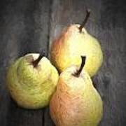 Chiaroscuro Style Image Fresh Juicy Pears In Rustic Wooden Setting Poster