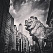 Art Institute of Chicago Lion Picture Poster