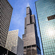 Chicago Downtown City Buildings With Willis-sears Tower Poster