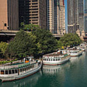 Chicago River Tour Boats Poster