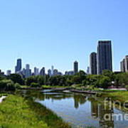 Chicago Skyline From Lincoln Park Zoo Poster