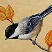 Chickadee And Autumn Leaves Poster