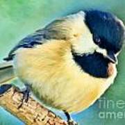 Chickadee Greeting Card Size - Digital Paint Poster
