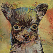 Chihuahua Poster by Michael Creese