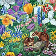 Chipmunk Garden Poster