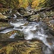 Chippewa Creek In Fall Poster