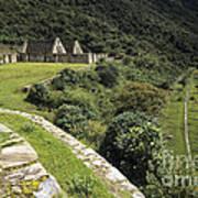 Choquequirao Inca Terraces Poster