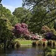 Christchurch Botanic Gardens New Zealand Poster