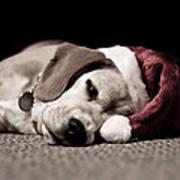 Christmas Beagle Poster by Paulina Szajek
