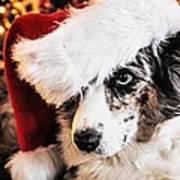 Christmas Cardigan Poster