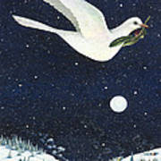 Christmas Dove Poster