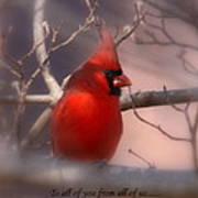 Christmas Greetings - Cardinal Poster