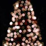 Christmas Tree Out Of Focus Poster