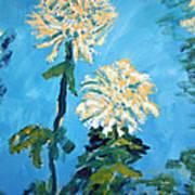 Chrysanthemum Floral Poster
