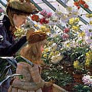 Chrysanthemums, 1890 Poster